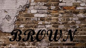 My Brick Wall Browns | PART 1 | Define the Problem-2360