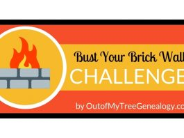 Bust Your Brick Wall Challenge