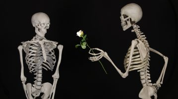 Skeleton handing a rose to another skeleton