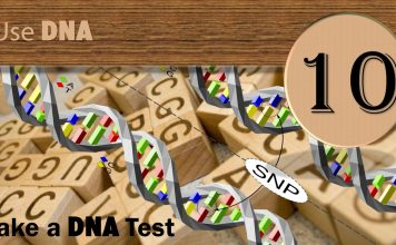Step Ten: DNA Research